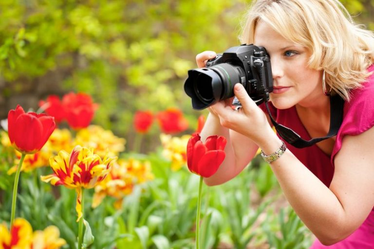 woman photographing tulips