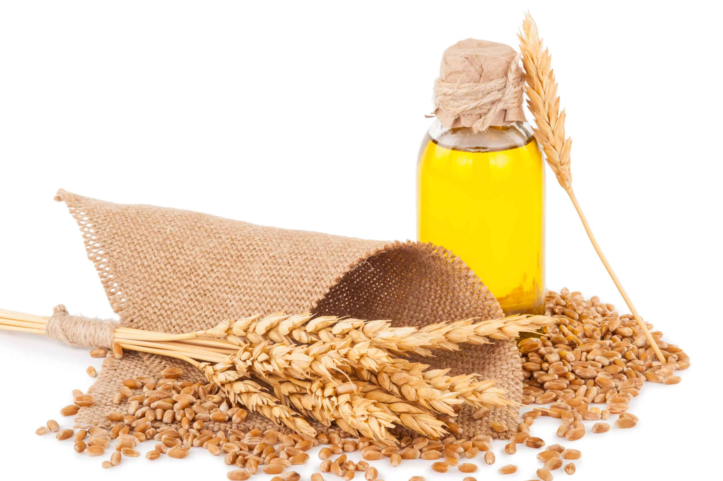 The Best Wheat Germ Oil: Shopping Guide and Recommendations (09/21)