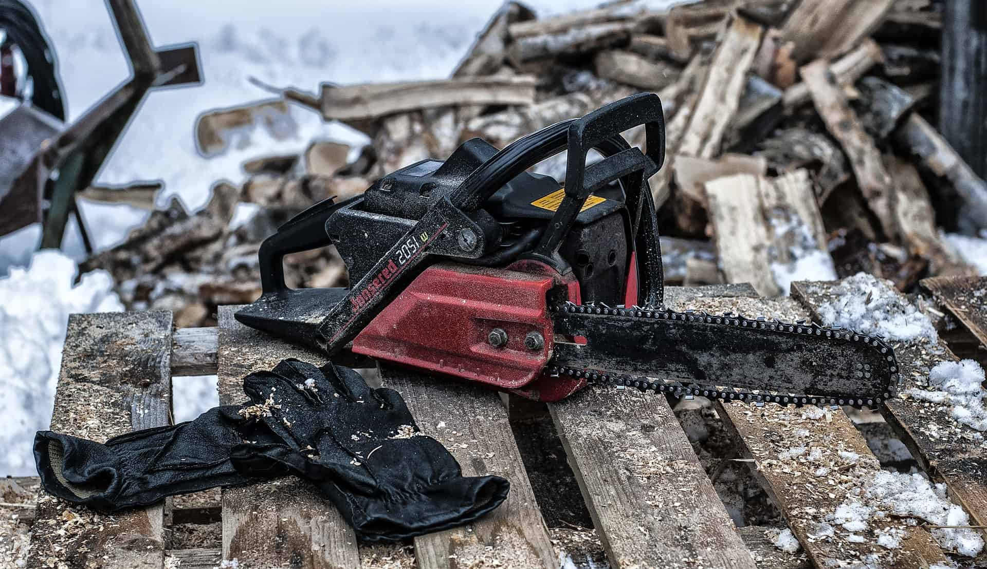 The Best Electric Chainsaw: Shopping Guide and Recommendations (09/21)