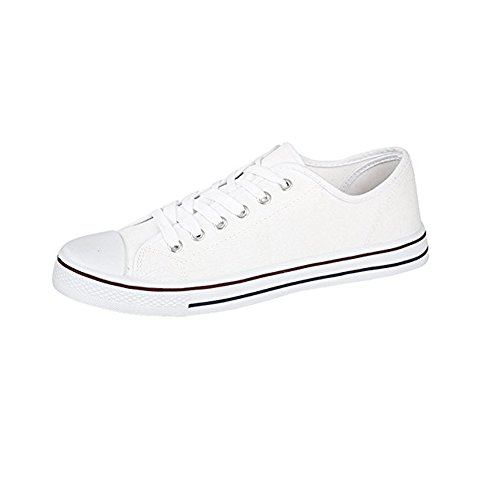 Mens Canvas Baseball Shoes in 4 Colours (10, White)