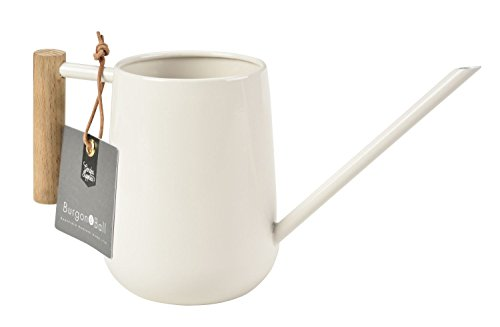 Burgon & Ball Indoor Watering Can in Stone Cream 0.7L Lightweight with Wooden Handle Thin Spout