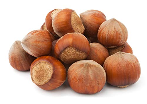 Raw Hazelnuts in Shell from Poland   2 kg   Premium   package: carton
