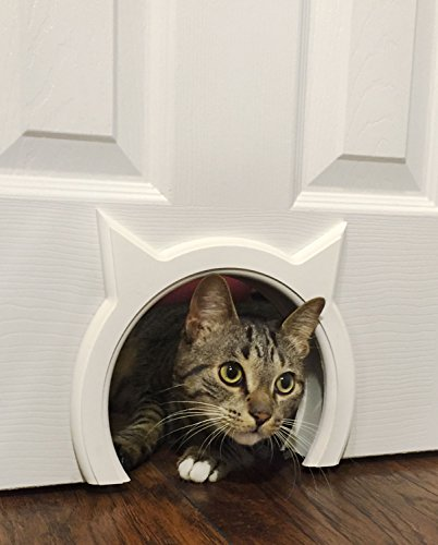 The Kitty Pass Cat door for cats with a capacity of up to 7 kg.