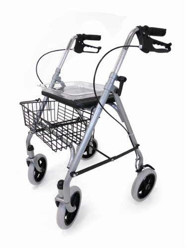 Drive Steel Rollator with Underseat Basket, Cane Holder and Tray