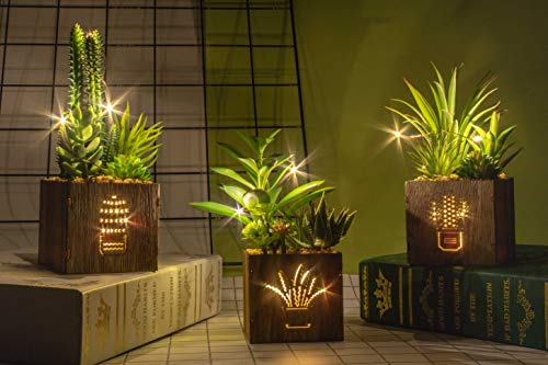 Set of 3 Artificial Succulents with Led Lights in Wooden Box, Artificial Plants Plastic Fake Topiary for Home/Office Decorations, Table Centerpiece, Valentine's Day