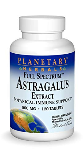 PLANETARY HERBALS - Astragalus Extract Full Spectrum 500 mg - 120 Tablets