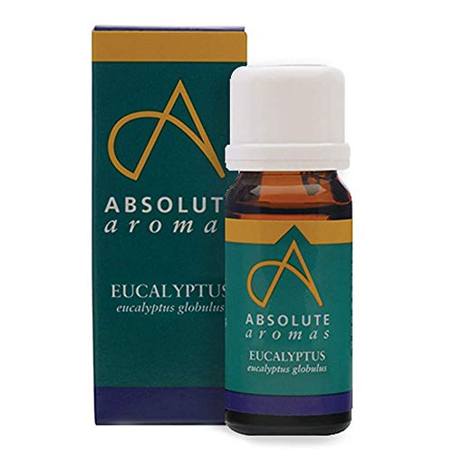 Absolute Aromas Eucalyptus Essential Oil 10ml - 100% Pure, Natural and Undiluted - an Antiseptic and Antibacterial Oil to Soothe and Clear - for use in Diffusers and Aromatherapy