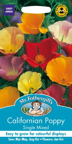 Mr Fothergills - Pictorial Packet - Flower - Californian Poppy Single Mixed - 500 Seeds