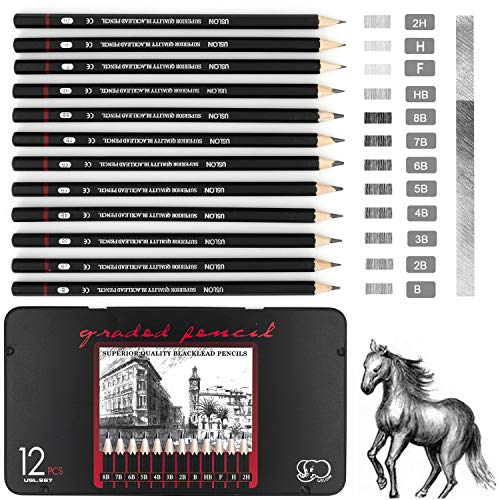 Professional Sketching Pencils Drawing Pencils Sketch Pencil Art Pencil Set for Artists Beginners, 12-Count in A Tin Box (8B-2H)