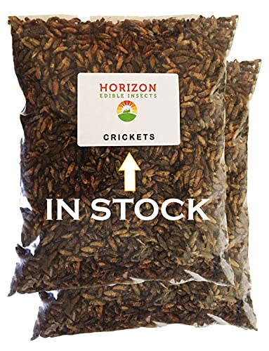 Edible Insects Keto Snacks Protein Rich Dried Crickets by Horizon 1kg