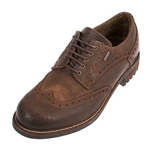 Cotswold Mens Oxford Leather Shoe in Brown - Size 9 UK - Brown