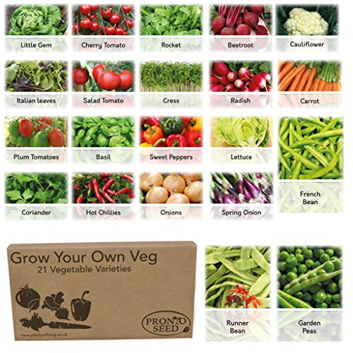 Bumper Vegetable Seeds Pack 21 Varieties with Over 1700 Seeds Salad Mix, Spicy Mix, Peas and Beans Mix and Vegetable Mix