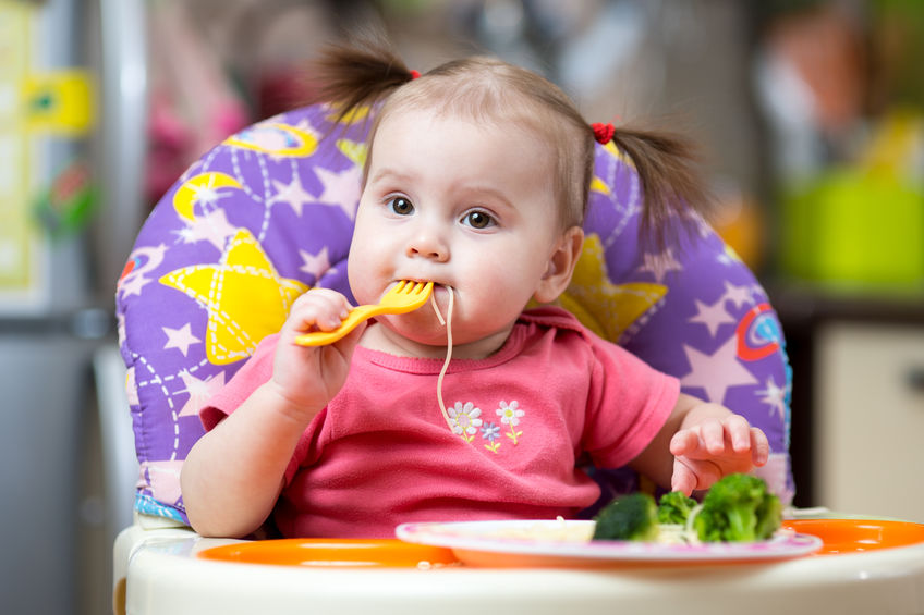 toddler girl in a highchair for feeding with fork and plate